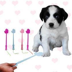 강아지 교육 회초리 색상랜덤 - d