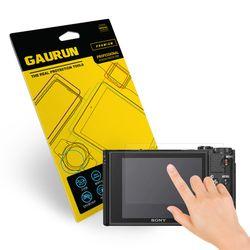 가우런 소니 사이버샷 DSC-WX800 올레포빅 액정보호필름 2매