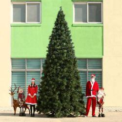 500cm  크리스마스트리 리얼 솔잎트리 대형트리