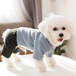 봉봉펫닷컴 오늘의 날씨 강아지옷