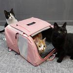 아밍백 강아지 고양이 백팩 이동가방 캐리어 하우스