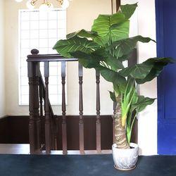 데코 나무 조화 화분 (타로트리)