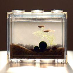 국산 마리모 백운산 물고기 블럭어항 키우기 세트-마리모(소)