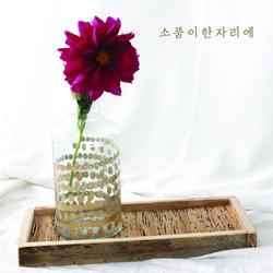 골드 도트 라인 유리 화병 medium