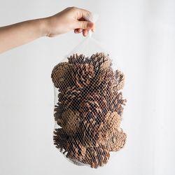 솔방울(대) 30개 묶음(6-7cm)