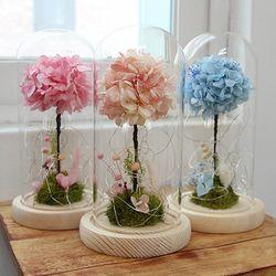 프리저브드 수국 유리돔-( 3 color ) 기념일선물