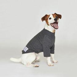 강아지옷 플로트 스탠다드 하프넥티셔츠 차콜