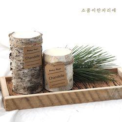 자작나무 직사각 트레이-medium