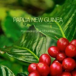 갓볶은 커피 파푸아뉴기니 마라와카 블루마운틴 1kg