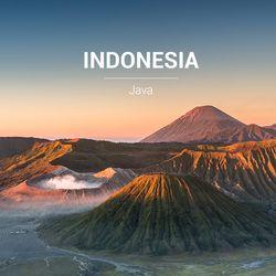 갓볶은 커피 인도네시아 자바 1kg HACCP인증