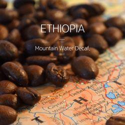 갓볶은 커피 에티오피아 마운틴워터 디 카페인 1kg