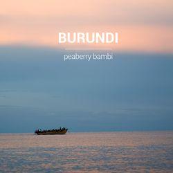 갓볶은 커피 부룬디 밤비 피베리 1kg HACCP인증
