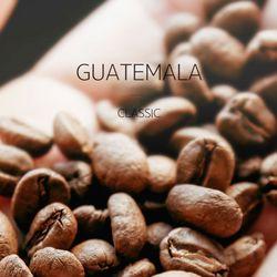 갓볶은 커피 과테말라 클래식 1kg HACCP인증