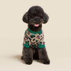 [오드스튜디오] 레오파드 스웨터 - 그린