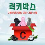 구체관절인형 액세서리 럭키박스 C세트(의상+가발+신발)