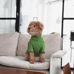 파인 니트 하이넥 스웨터(그리너리)