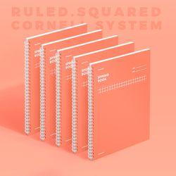 스프링북 컬러칩 - 리빙코랄 (코넬시스템) 5EA