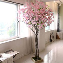 조화나무 실내조경 인테리어 내츄럴 구름벚꽃나무210cm (사방형)