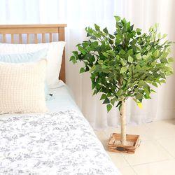 조화나무 실내조경 인테리어 자작나무100cm (사방형)