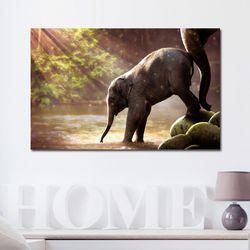 캔버스액자 자연 세렝게티 아기코끼리 B타입 35x35cm
