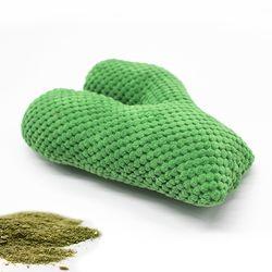 캣닢선인장 (초록색) 캣닢쿠션 고양이캣닢 장난감