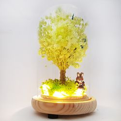 LED 유리돔 라임 안개나무 무드등 - 프리저브드 드라이플라워