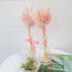 라그라스 꽃병세트 프리저브드