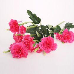 카네이션 꽃 진분홍(10송이)
