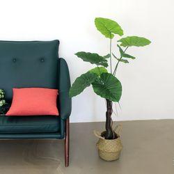 인테리어조화 인조나무 조화화분 라인 알로카시아 110