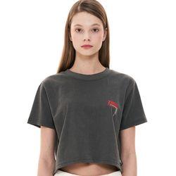 [예약판매 3/3순차배송] (CTC1) 피그먼트 로고 반팔 크롭 티셔츠 차콜