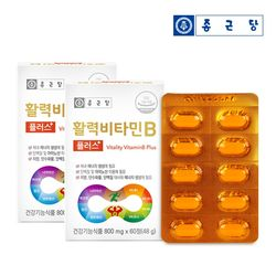 종근당 활력비타민B 2박스