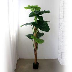 인테리어조화 인조나무 조화화분 클래식 알로카시아 150