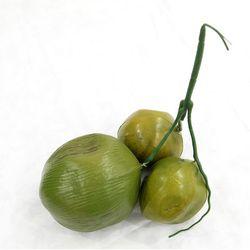 인테리어 소품 야자나무 코코넛열매3PCS