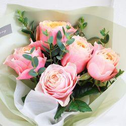 [플플] 부부젤라 장미 미니 생화꽃다발