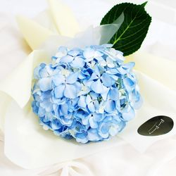 [플플] 수국 블루 (1대) 생화꽃다발