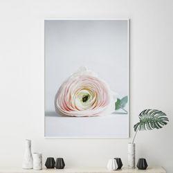 플로어 모란 꽃 그림 액자 A3 포스터+알루미늄액자