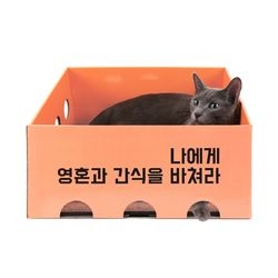 노리노리캣 카펫 스크래쳐 박스 (피치)