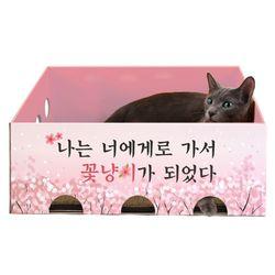 노리노리캣 카펫 스크래쳐 박스 (벚꽃에디션)