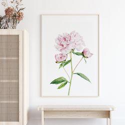 퓨어 모란 꽃 그림 액자 A3 포스터+알루미늄액자