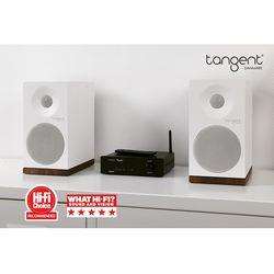 탄젠트 Ampster BT II(앰프)+Spectrum X4(스피커)  오디오 세트