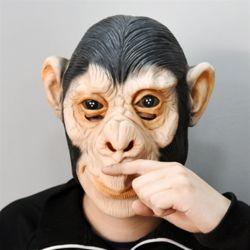 원숭이-가면
