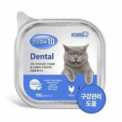 포르자 건강캡슐10 구강 dental 100g 고양이 기능성 주식캔