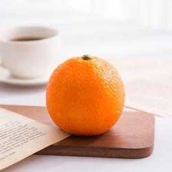 오렌지 모형