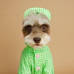 Check Raincoat 체크 레인코트 Green