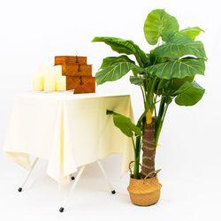 데코 나무 조화 화분 (알로카시아)