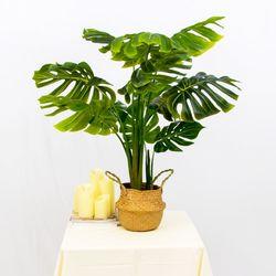 데코 인테리어 나무 조화 화분 (몬스테라)
