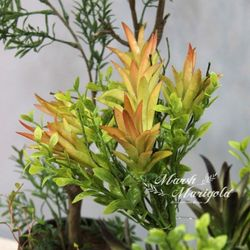 35CM 다육식물 부쉬(2color)
