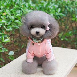 강아지옷 고양이옷 아디도그 뼈디다스 올인원 츄리닝 트레이닝복
