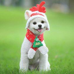 강아지 모자 고양이 목도리 루돌프 코스프레 크리스마스 코스튬