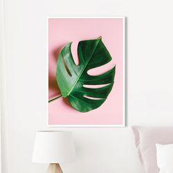 스위트몬스테라 식물 액자 A3 포스터